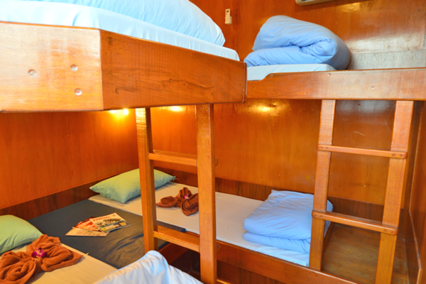 MQ3 4 Bed Share 2